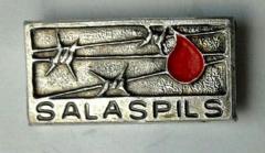 Salaspils Survivor & Commemorative Pin