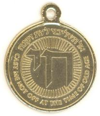 The Home of the Sages of Israel Medallion
