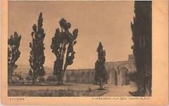 """E. M. Lilien Postcard """"Cypressen Auf Dem Tempelplatz"""" (""""Cypresses on Temple Square"""")"""
